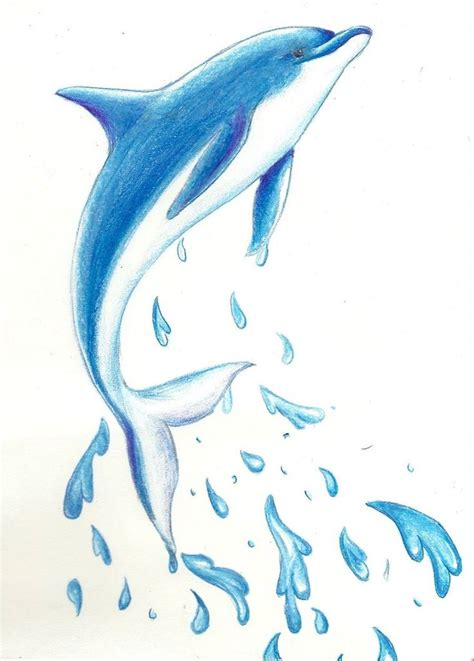 dolphin drawing ideas  pinterest dolphin art