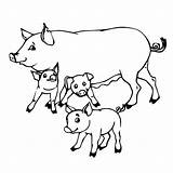 Coloring Pigs Pig Baby Mother Pages Piglet Drawing Cartoon Mom Printable Colouring Super Outline Getdrawings Cute Supercoloring Getcoloringpages Animals Adorable sketch template