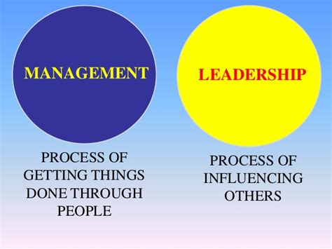 nursing leadership  management editing services