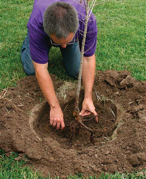 10 chores and garden ideas for hirerush