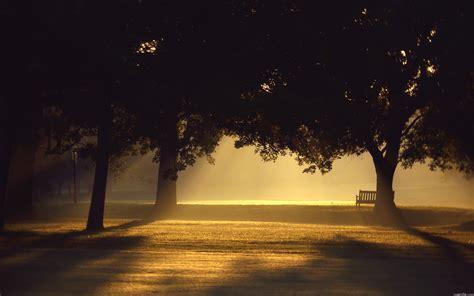 Park At Night #6952005