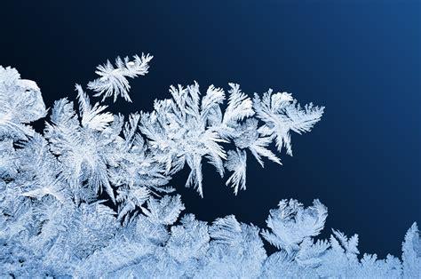 Frost Patterns On Windows Free Stock Photo  Public Domain