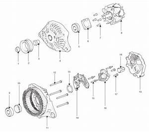 Hyundai Elantra  Alternator  Components And Components