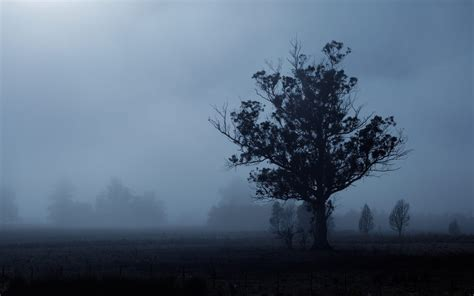 Background Free Wallpaper by Free Gloomy Background Widescreen Gloomy Wallpaper