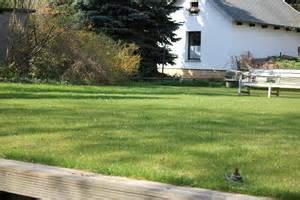 Rasenmähen Ab Wann : richtig rasenm hen schnitth he wie oft zu welcher tageszeit ~ Frokenaadalensverden.com Haus und Dekorationen
