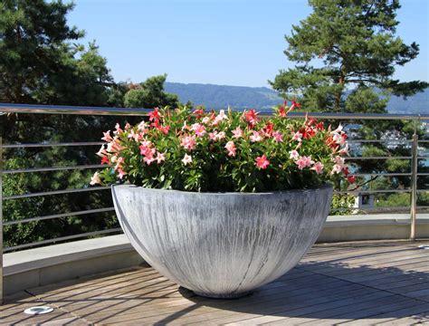 Gartenpflege Professionell Mit Beslbischoffgartenbau
