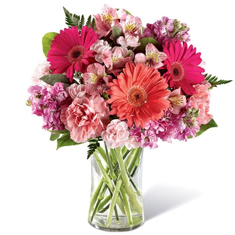 We did not find results for: Blushing Beauty Bouquet   Toronto GTA Flower Delivery