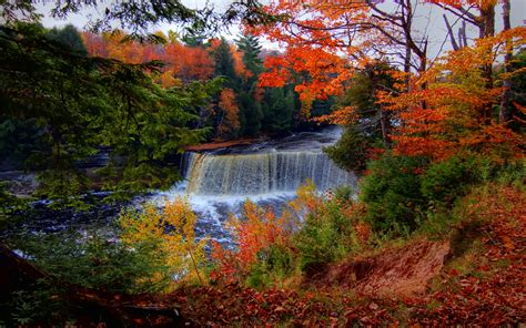 Waterfall Hd Wallpaper Background Image 2560x1600 Id171127 Wallpaper Abyss