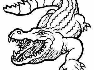 Alligator clipart images black and white free download png ...