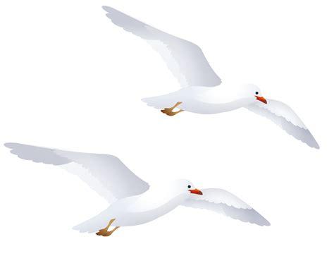 Seagull Clipart Seagulls Clipart Clipground