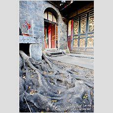 Travel Photo Gallery  Zhu Family Garden, Jianshui, China