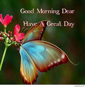 Good Morning Butterfly Images And Quotes