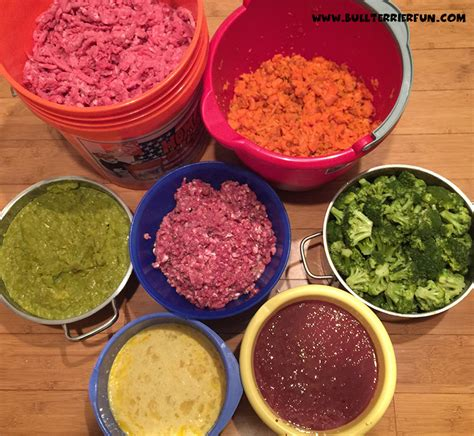 homemade raw food recipe  dogs