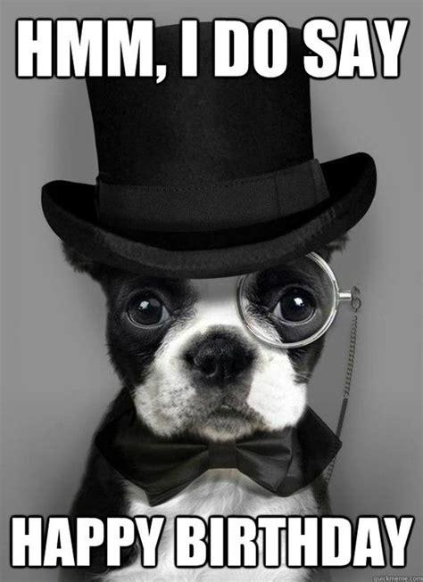 Happy Dog Meme - pinterest the world s catalog of ideas