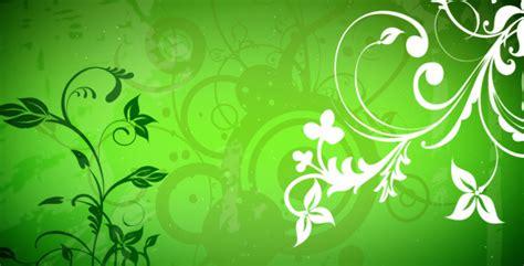 vector flowers  loop  spc videohive