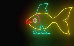 Neon Fish Fish & Animals Background Wallpapers on