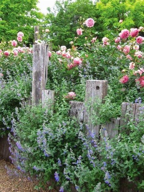 Garten Ideen Mit Lavendel by Lavendel Und Rosa Ein Sch 246 Nes Zusammespiel