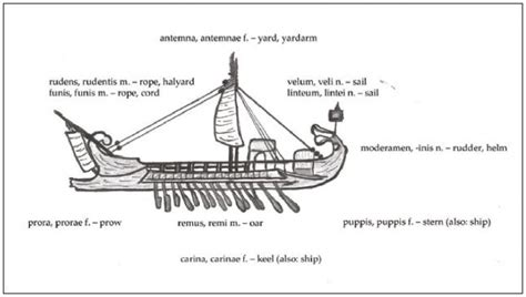 Parts Of A Longboat by Labelled Viking Longboat Ovid Metamorphoses 3 511 733 572