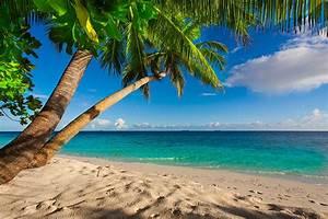 Bilder Meer Strand : foto strand meer natur tropen palmengew chse k ste horizont ~ Eleganceandgraceweddings.com Haus und Dekorationen