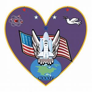 NASA Astronaut Wings Logo - Pics about space