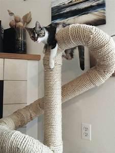Arbre À Chat Pour Gros Chat : l 39 arbre chat un terrain d 39 aventures et de repos pour ~ Nature-et-papiers.com Idées de Décoration
