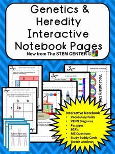 Life Science: Interactive Notebook Bundle by stemcenter ...