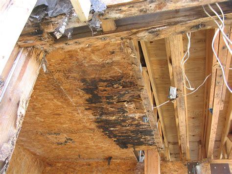 ensuring balcony durability waterproofing details