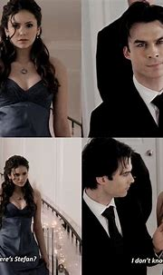 Damon Salvatore and Elena Gilbert Delena The vampire ...