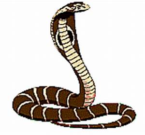 Animated Snake Pictures - ClipArt Best