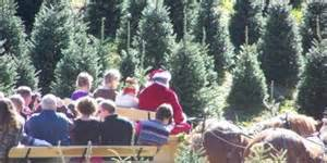 christmas tree farm chattanooga tn world kayak free style competition around and about 8691