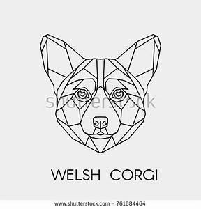 Corgis Stock Images, Royalty-Free Images & Vectors ...