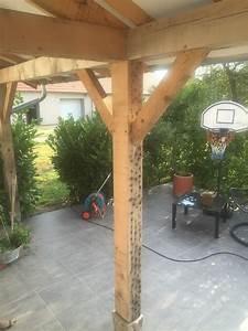 Peinture Sur Bois Exterieur : peinture ext rieur sur bois brut steve robert peinture ~ Melissatoandfro.com Idées de Décoration