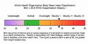 Body Composition Report Analysis Example Health Fitness
