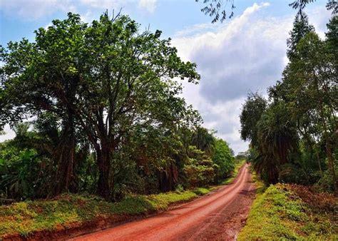 uganda climate weather month temp visit rain guide storyteller travel equator