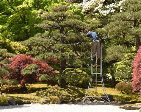 japanese garden symbolism japanese garden the world s best gardening blog