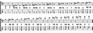 Bass Guitar Exercises For Dummies Cheat Sheet