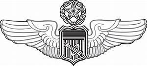 File:USAF Master Astronaut badge.jpg - Wikimedia Commons