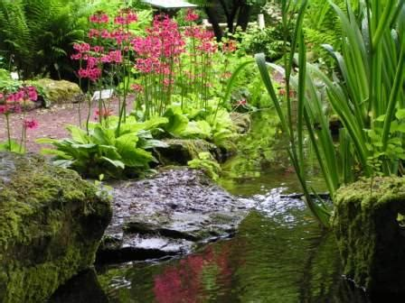 Förderverein Botanischer Garten Braunschweig by Kalender