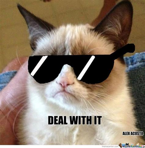 Deal With It Meme - 1000 images about deal with it on pinterest natalie cole cats and clinton n jie