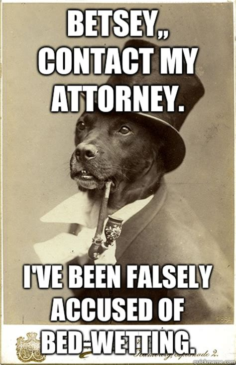 Benson Dog Meme - betsey contact my attorney i ve been falsely accused of bed wetting old money dog quickmeme