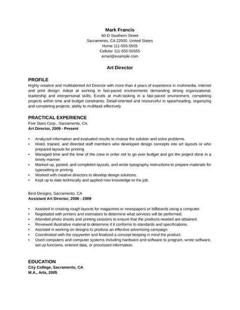 professional director resume template