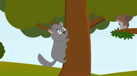agile cat