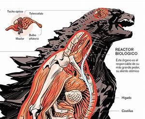 Godzilla On Behance