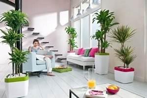 Feng Shui Schlafzimmer Pflanzen :  ~ Bigdaddyawards.com Haus und Dekorationen
