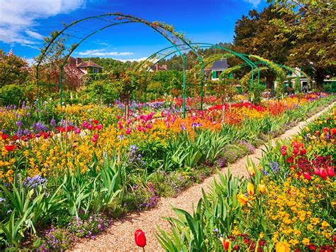 The World's Top 5 Destinations For Spring Flowers