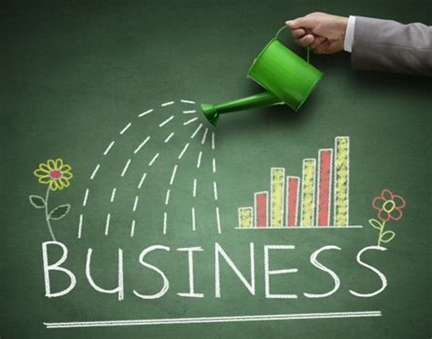 startup   business development carpe diem valuenet