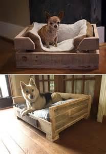15 creative dog bed design ideas home design and interior