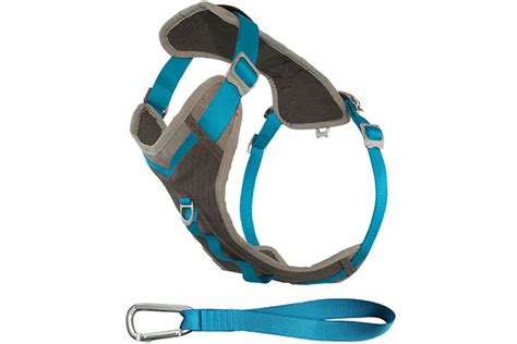 kurgo journey adventure harness  size dogs