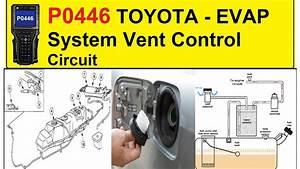 P0446 Toyota Evap System Vent Control Circuit