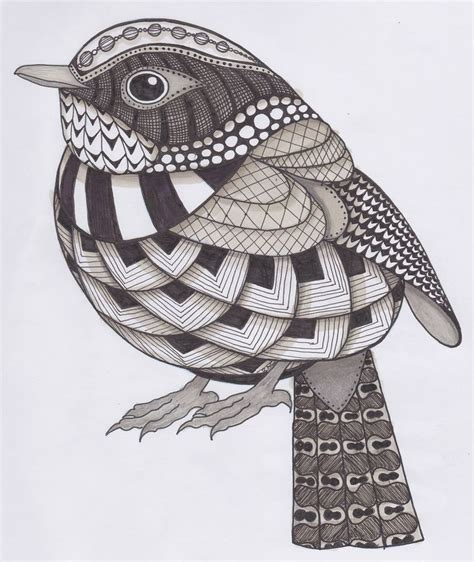 bird zentangle  color google search zentangle